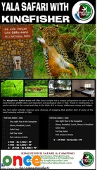 Explore Majestic Yala National Park