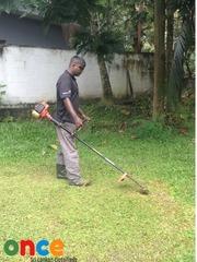 Garden Grass Cutting
